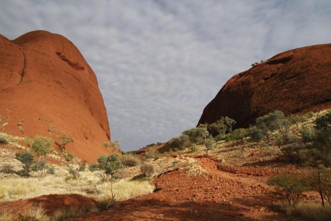 australia024
