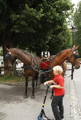 Austria2008_35
